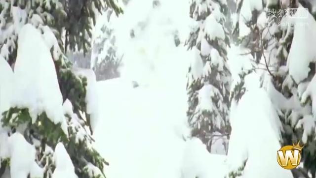 2014年1月碉堡运动精彩瞬间视频合辑