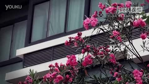 《嘉景》 http://www.w2168.co; 厦门大学嘉庚学院风景短片