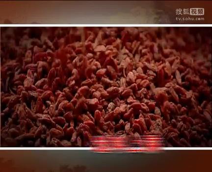 斯力泰招商视频_clip1