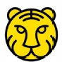老虎证券TigerBrokers